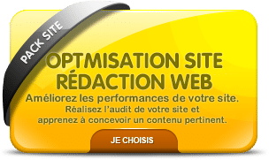Vignette formation optimisation site web