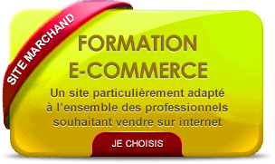 Formation site e-commerce